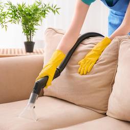 Green & Eco Cleaning