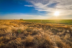 Texline Farm - Land For Sale