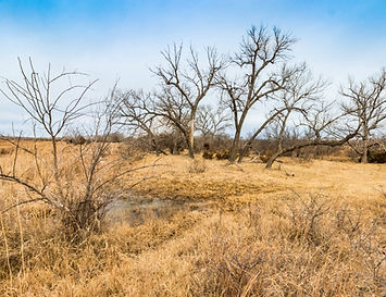 Gray County, Texas Land Auction