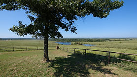 English Ranch - Land For Sale
