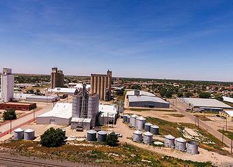 Hale County, Texas Land Auction