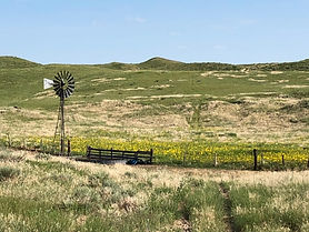 Trout Ranch - Land For Sale