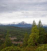 Bull Springs Skyline Forest.jpg