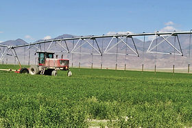Dixie Valley Farm - Land For Sale