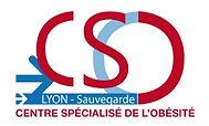 CSO logo-cso-version-siege.jpg
