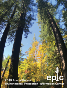 EPIC's 2018-2019 Annual Report