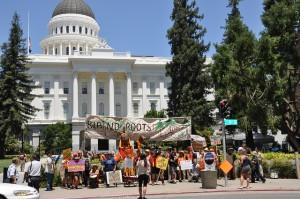 Rally in Sacramento
