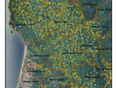 Liquidation logging—The story of Green Diamond in Maple Creek