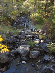 seiad-creek