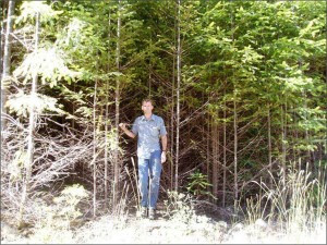thinning pic_pre2. Photo Credit BLM