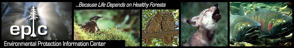 EPIC Banner_Because Life Depends on Healthy Forests_ 700x116