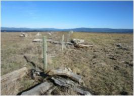 Photo 6.  CDFW grazer fencing by scenic Lake Tolowa.