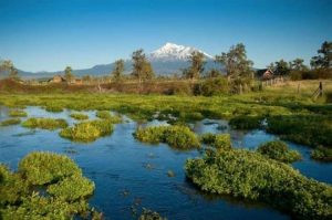 Take Action: Stop Deceptive Water Project On The Shasta River!