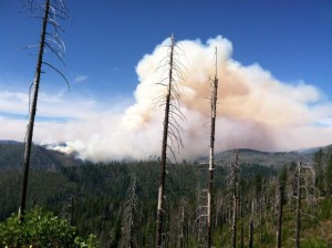 Take Action: Bulldozers in the Trinity Alps Wilderness