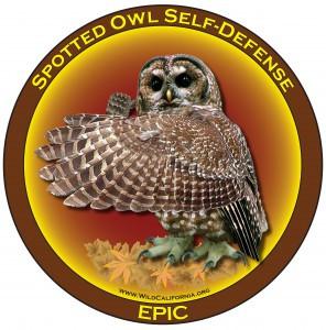 Owl Self-Defense wings shadow