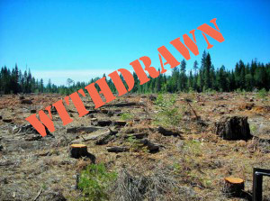 EPIC Vigilance and Legal Action Cancels Harmful Logging Project in the Mad River Watershed – A