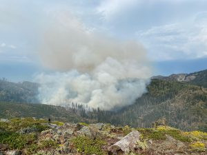 ACTION ALERT: Urge Forest Supervisors To Use MIST Guidelines In Trinity Alps Wilderness!