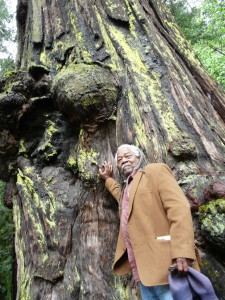 April 1 Rally for Richardson Grove in Garberville