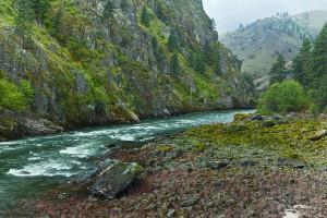 salmon-river-spring-M-Aaron Cowan