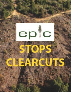 EPIC Open House Mixer: Protecting Forests, Wildlife, and Clean Water