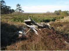 Photo 8. Refuse pile in scenic area by CDFW barn.