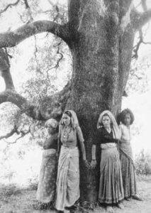 chipko-tree-huggers