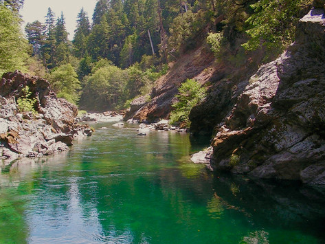 Comments Needed: Black Butte River Tributaries At Risk