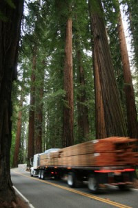 Kick-off for EPIC's Richardson Grove Legal Fund