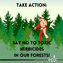 Say No To Herbicides: A New Opportunity to Comment On The North Shore Project!