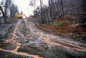 loggingroad