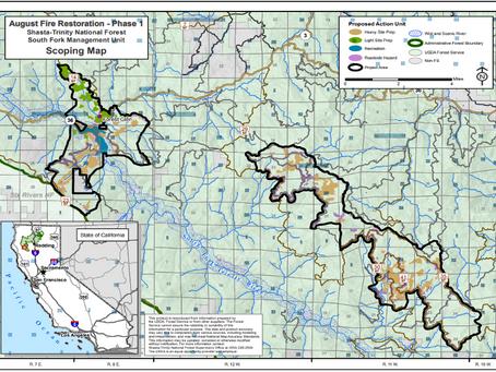 Action Alert: Help Stop Destructive Post-Fire Logging Project In Shasta-Trinity Nat'l Forest!
