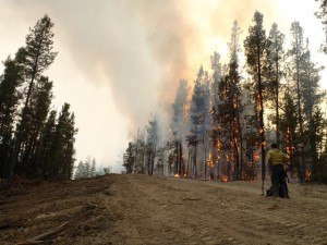 Dozerline backburn on the Southern end of Mill fire.  Credit Reuben/Feather River Hotshots