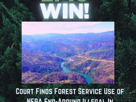 BREAKING: EPIC Win For Mendocino National Forest at the Ninth Circuit!
