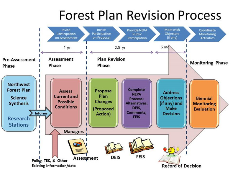 Forest Plan Revision Process