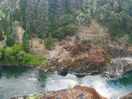 Take Action To Protect The Salmon River Watershed, Wildlife, And Wild Salmon Fisheries!