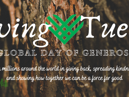 Giving Tuesday 2020: Giving Back & Moving Forward