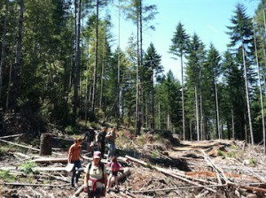 Hole in Headwaters Hike Reduced