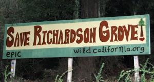 Direct Message to Motorists: Richardson Grove Threatened