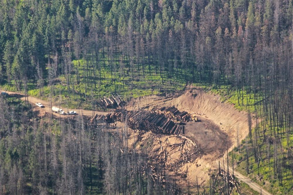 Westside logging implementation newly constructed landing site. Photo courtesy of KS Wild.