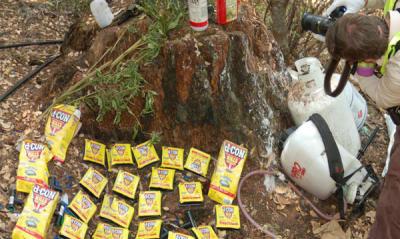 Stop Pollution Pot—Ban Super Toxic Rat Poisons