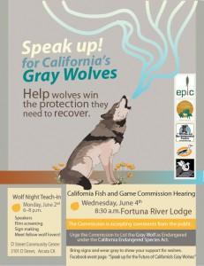 wolf-event-flyer-final-CS5