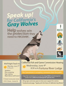 Wolf Night Teach-in & Fish and Game Commission Hearing