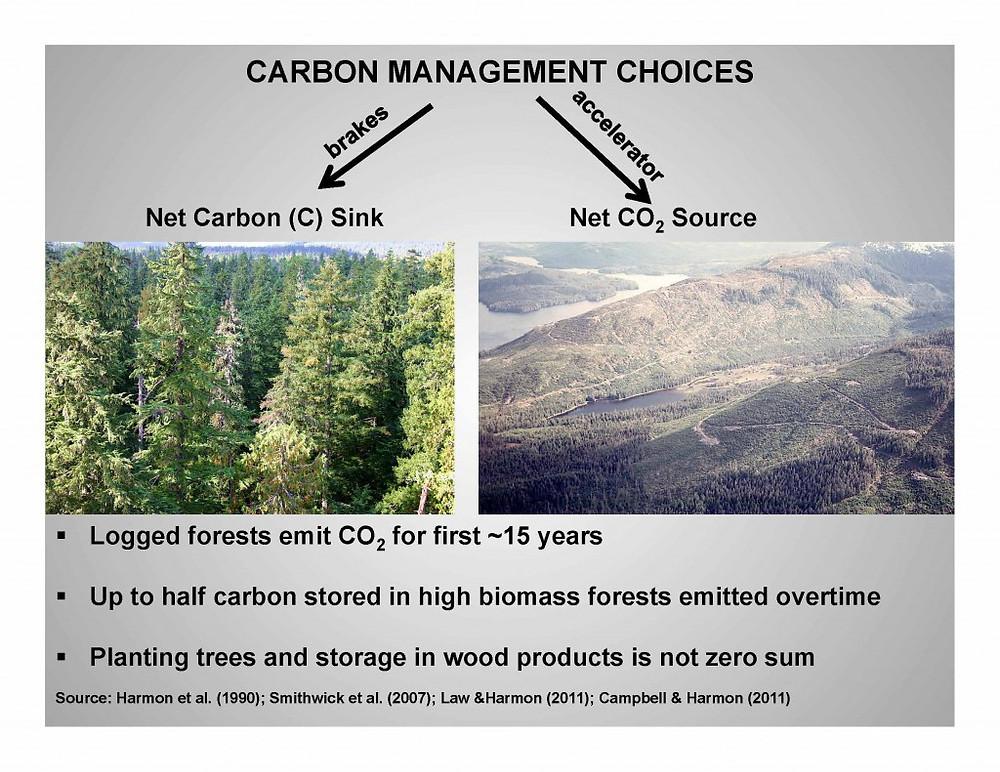 Carbon Management Choices