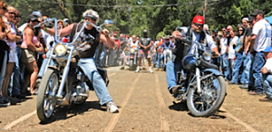 Redwood Run Biker Party Joins Save Richardson Grove Movement