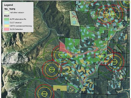 SPI Seeks Loopholes to Log Owl Habitat