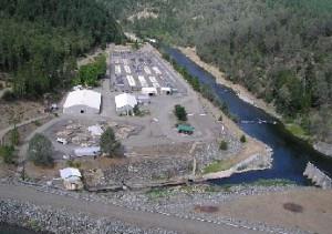 Historic Agreement Reforms Trinity River Fish Hatchery