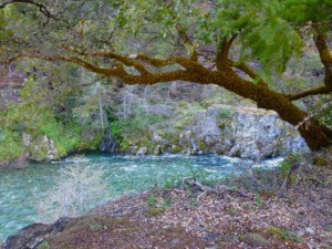 North Fork Salmon River