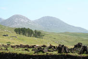 view of bog and mountains