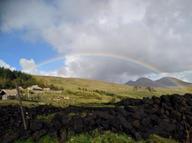 turf with rainbow