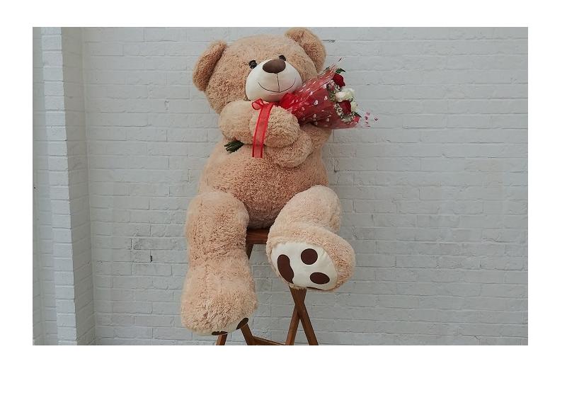 Teddy Bear One.png